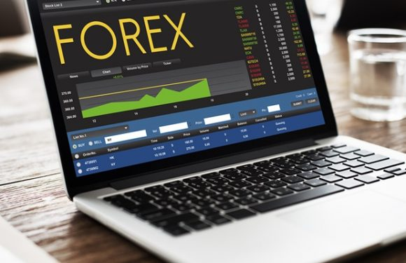 Learn The Basics of Online Forex Trading